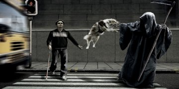 Death Dogs Funny Twitter Covers