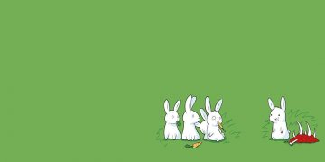 Rabbits Twitter Covers