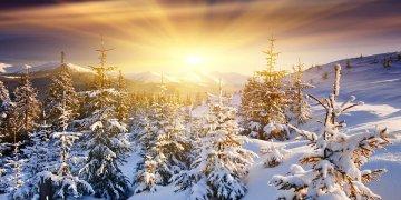 Winter Sun L Twitter Covers